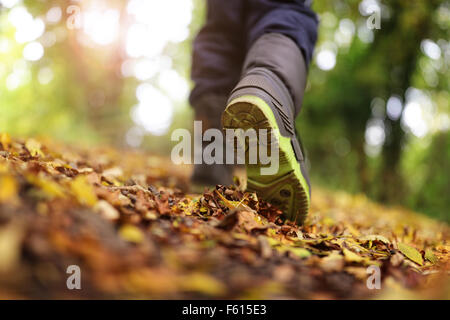Walking in autumn and winter - Stock Photo