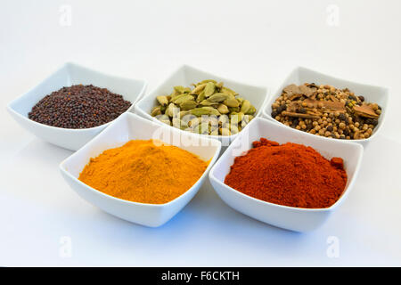A selection of curry spices (mustard, cardomom, garam masala, turmeric, paprika) in bowls against a white background - Stockfoto