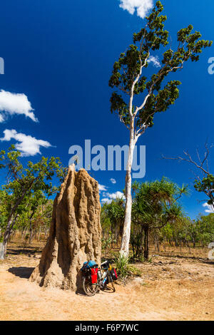 Termite mounds in Northern Australia can reach several meters just like this one. - Stock Photo