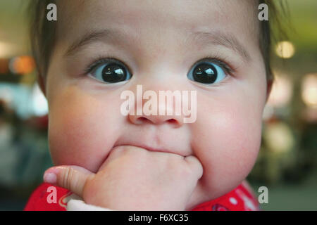 Close up of wide-eyed baby girl with her fingers in her mouth. her thumb wet and her eyes transfixed; Halifax, Nova - Stock Photo