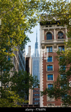 Summer in Midtown Manhattan, New York City with views on skyscrapers framed by london trees. - Stock Photo