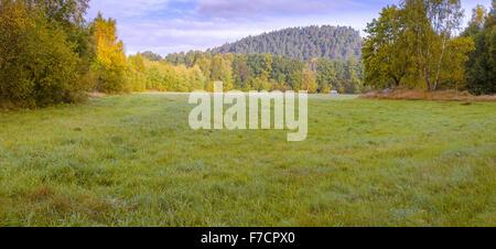 Beautiful fresh early morning lush vivid vibrant green meadow landscape panorama view - Stock Photo