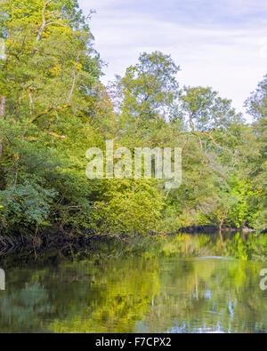 Beautiful fresh vivid vibrant green tranquil nature landscape and river scene - Stock Photo