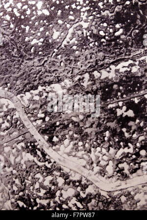 mud fields of Flanders during the prolonged World War One, During the Second Battle of Ypres was fought from 22 - Stock Photo