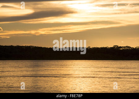 Wonderful orange yellow sunset on the river Amazon with the silhouettes of the trees. Amazonas State, Brazil - Stock Photo
