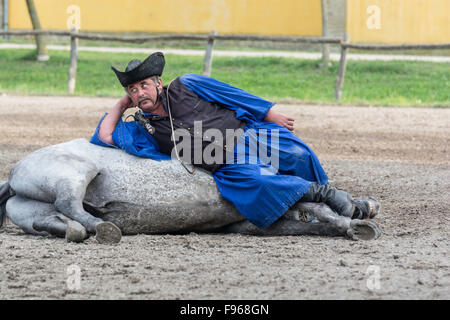 Hungary is home to an array of unusual animals and farming practices. Flamboyant csikos horsemen are the region's - Stock Photo