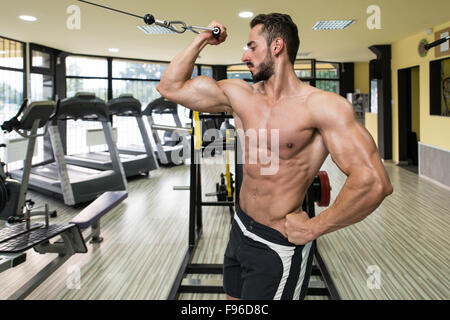 Young Man Bodybuilder Is Working On His Biceps With Cables In A Gym - Stock Photo