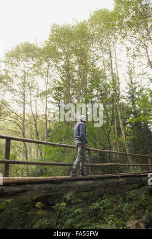 Mature hiker crossing footbridge in forest, Austrian Alps, Carinthia,  Austria - Stock Photo