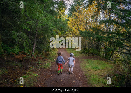 Rear view of boy and girl walking through forest, holding hands - Stock Photo