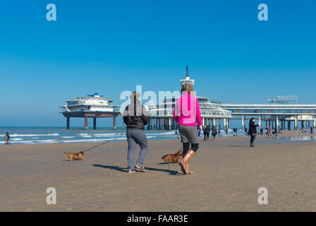 SCHEVENINGEN, NETHERLANDS - MARCH 8, 2015: Unknown people letting their dogs out a sunny spring day on the North - Stockfoto