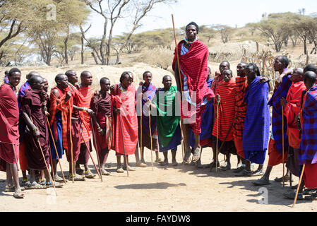 Maasai warriors wearing brightly coloured clothing perform traditional dance, Ngorongoro Crater Conservation Area; - Stock Photo