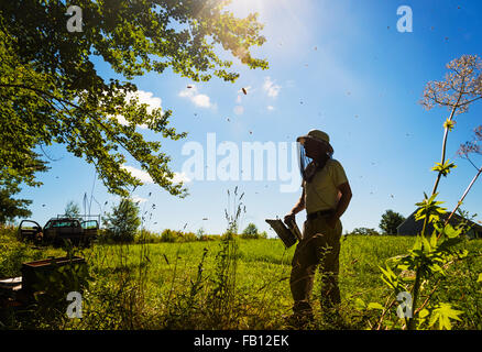Hope, Beekeeper standing with smoker - Stock Photo