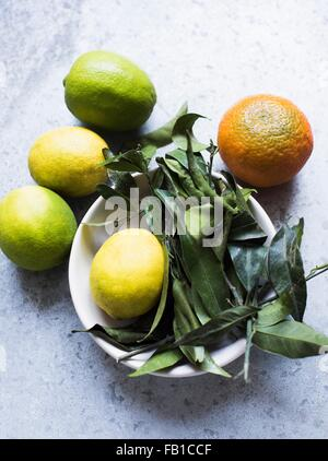 Overhead view of citrus fruit and leaves in bowl - Stock Photo