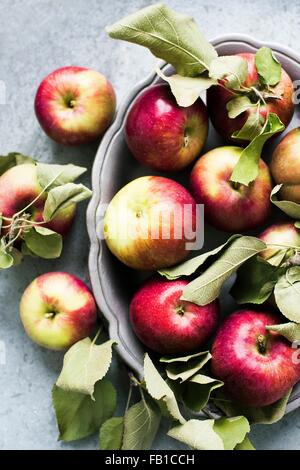 Overhead view of apples in serving dish - Stock Photo