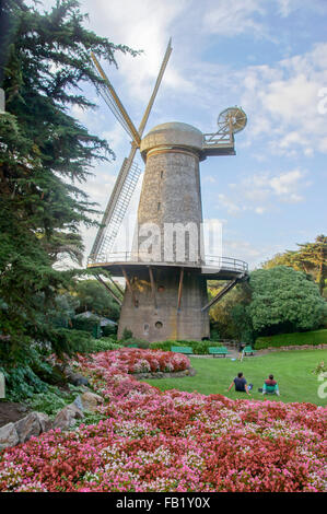 California San Francisco Dutch Windmill In Golden Gate Park Photo Stock Photo Royalty Free