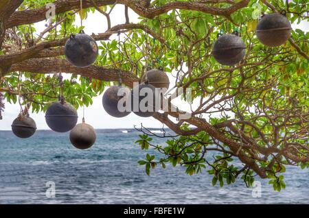 Low Angle View Of Metallic Balls Hanging From Tree Against Sea - Stock Photo