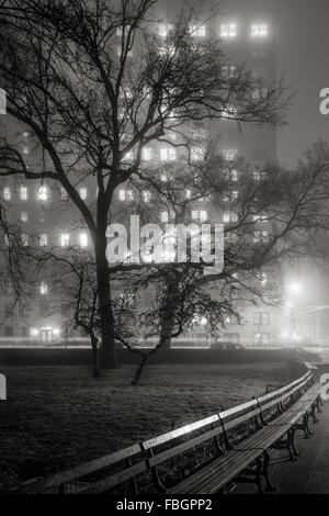 Nebel im Central Park in der Nacht. Bäume werden Silhouetten, beleuchtet von den Hochhäusern der Upper West Side. - Stockfoto