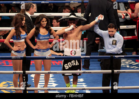 Brooklyn, New York, USA. 16th Jan, 2016. JULIAN SOSA celebrates after defeating BRYAN TIMMONS in a junior welterweight - Stock Photo