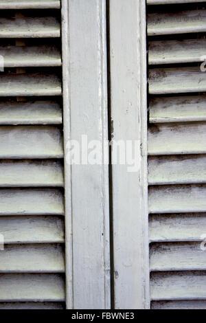 white wood venetian blind - Stockfoto