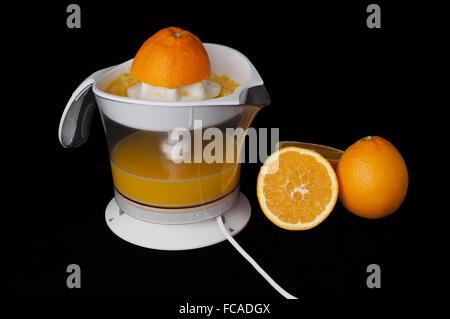 Citrus Juicer and oranges - Stock Photo
