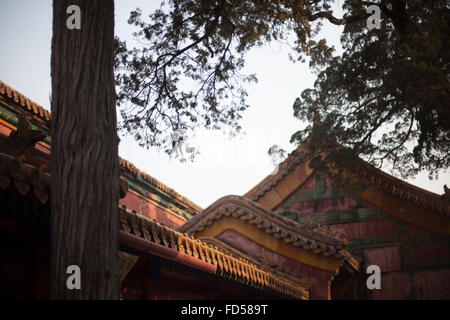 Low Angle View Of Palace At Forbidden City Against Clear Sky - Stock Photo