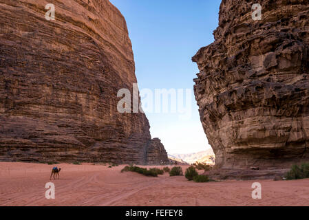 Lawrence of Arabia valley in Wadi Rum desert, Jordan. Wadi Rum is also known as The Valley of the Moon. - Stock Photo