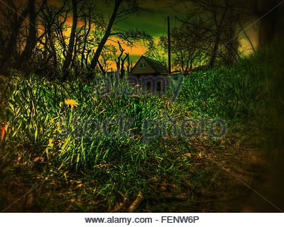 Green Grass In Field With House In Background - Stock Photo