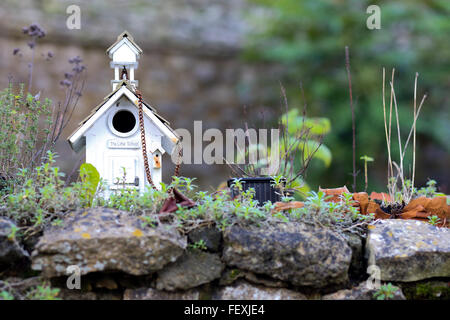 Little wooden painted bird feeding house on stone wall, the little school - Stock Photo