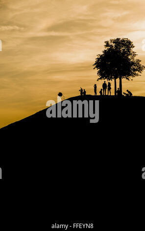 silhouettes of adults and children on a mound under a tree with kite at dusk - Stock Photo