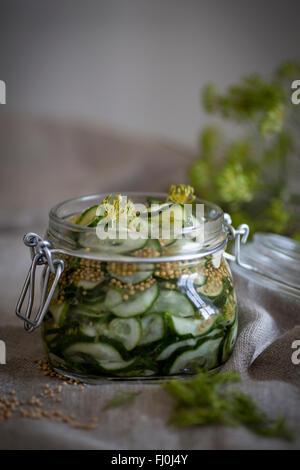 Home made, pickled cucumber in a jar of glass - Stock Photo