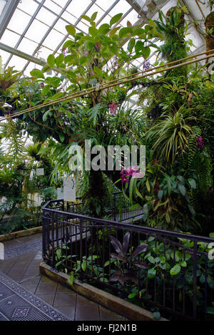 The CONSERVATOR OF FLOWERS is a botanical greenhouse built in 1878, and is located in GOLDEN GATE PARK - SAN FRANCISCO, - Stock Photo