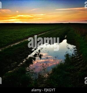 Scenic View Of Water Puddle On Field Against Sky During Sunset - Stock Photo