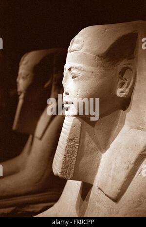 Italy, Piedmont, Turin, Egyptian Museum, Sphinx Room - Stock Photo