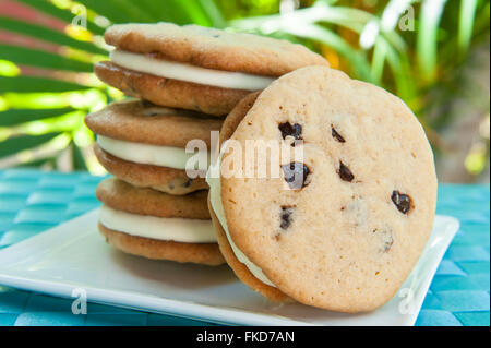 Ice cream Sandwich - chocolate chip cookie with vanilla ice cream with tropical background - Stock Photo