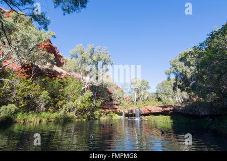 Karijini National Park Australia Swimming At Fortescue Falls Stock Photo Royalty Free Image