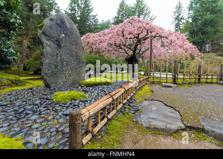 Cherry trees in bloom moss street in victoria bc canada for Landscaping rocks victoria bc
