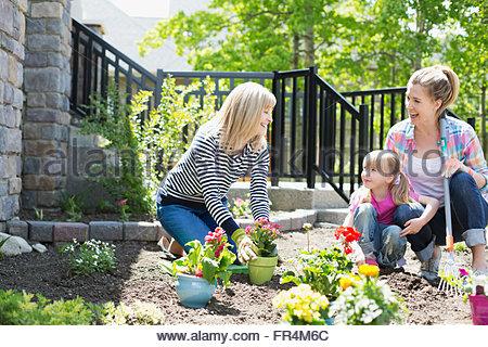 three generations of women working on flower garden - Stock Photo