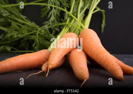 Carrots on a black background - Stockfoto