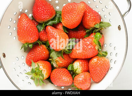 Fresh strawberries in a colander - Stock Photo