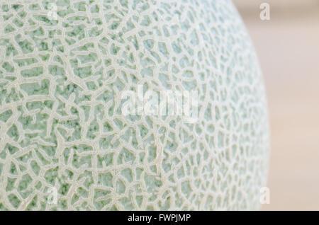 melon fruit peel background - Stock Photo