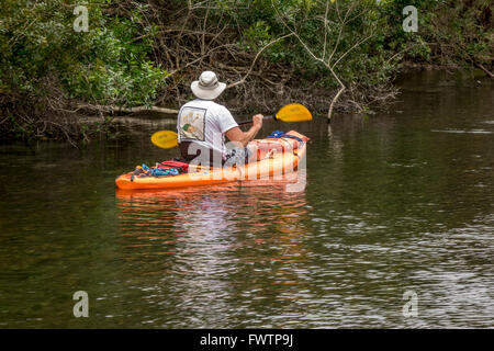 A Man Kayaking On The Weeki Wachee River Springs State Park Florida Rental Kayaks From Paddling Adventures - Stock Photo