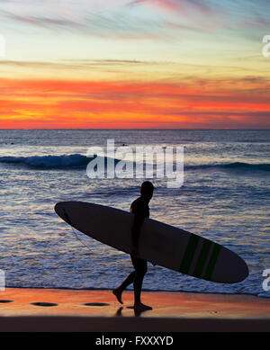 Surfer on the beach at colorful sunset in Portugal - Stock Photo