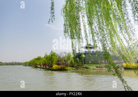 yangzhou single guys Guangzhou nightlife is an in depth guangzhou life guide for expats in guangzhou on dining, nightlife, travel, events, festivals, performances and more.