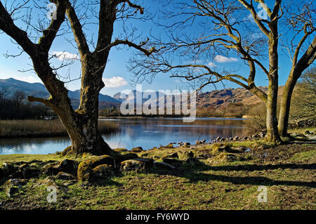 UK,Cumbria,Lake District,Elterwater - Stock Photo