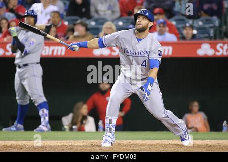 Anaheim, California, USA. 25th Apr, 2016. Kansas City Royals left fielder Alex Gordon #4 watches his shot in the - Stock Photo