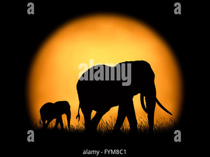 Silhouette elephant on the background of sunset. Large sun on a dark background - Stock Photo