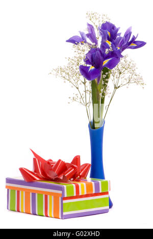 Bouquet of a irises and gift box on white background - Stock Photo