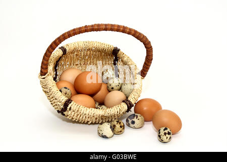 Brown and colored eggs in the basket on a white ba - Stock Photo
