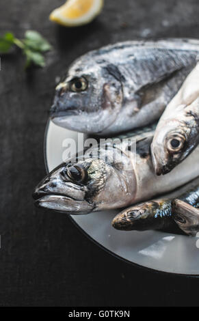 Close-up of raw sea bream, sea bass, sardines and mackerel fish on plate - Stock Photo