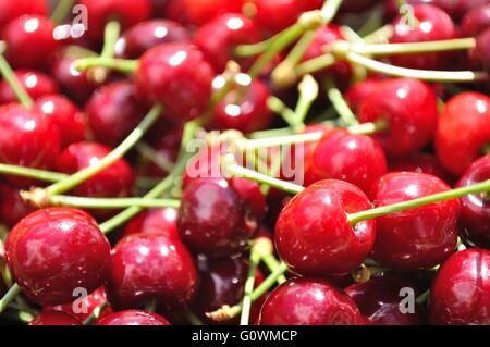 Texture from group of red ripe cherries. Fruit background - Stock Photo
